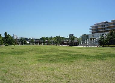 西ヶ原みんなの公園の画像1