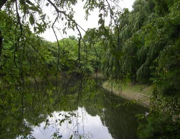 独立行政法人森林総合研究所の画像1
