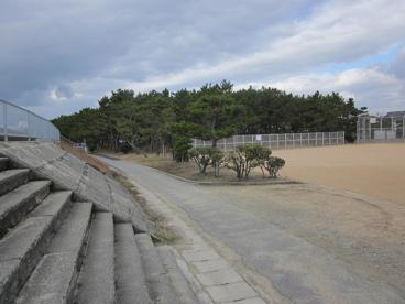 望海浜公園の画像1