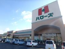 ハローズ羽島店