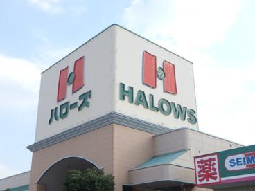 ハローズ田ノ上店の画像2
