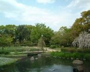 尾浜公園 の画像1