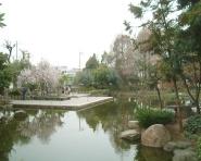 近松公園 の画像1