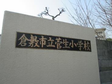 倉敷市立 菅生小学校の画像1