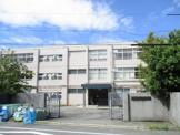 くすのき小学校