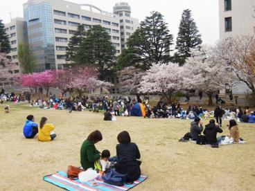 東京工業大学の画像3