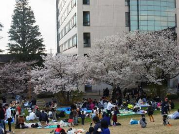 東京工業大学の画像4