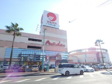 山陽マルナカ マスカット店の画像1