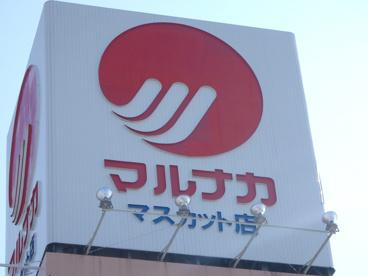 山陽マルナカ マスカット店の画像2