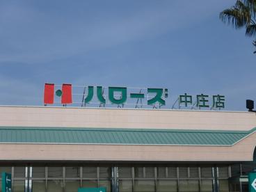 ハローズ 中庄店の画像3