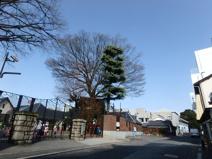 若竹の園保育園