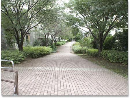 新田間川緑地の画像
