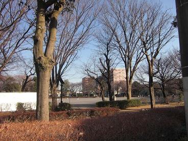 東柏ヶ谷近隣公園の画像1
