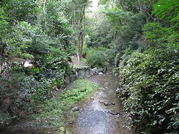 西河原公園の画像2