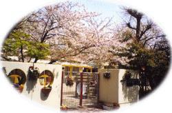 真生幼稚園の画像1