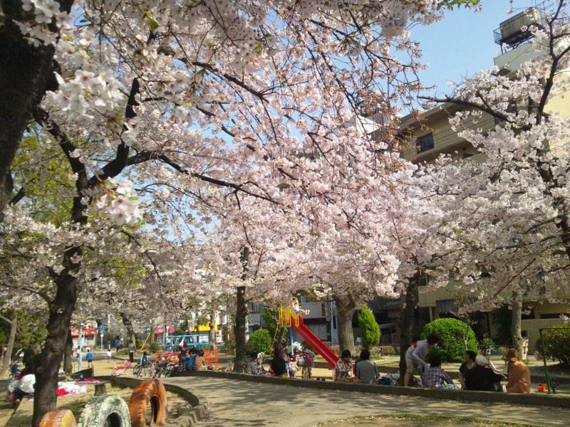 寺田町公園の画像