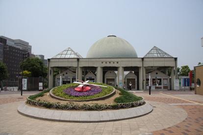 天王寺公園の画像1