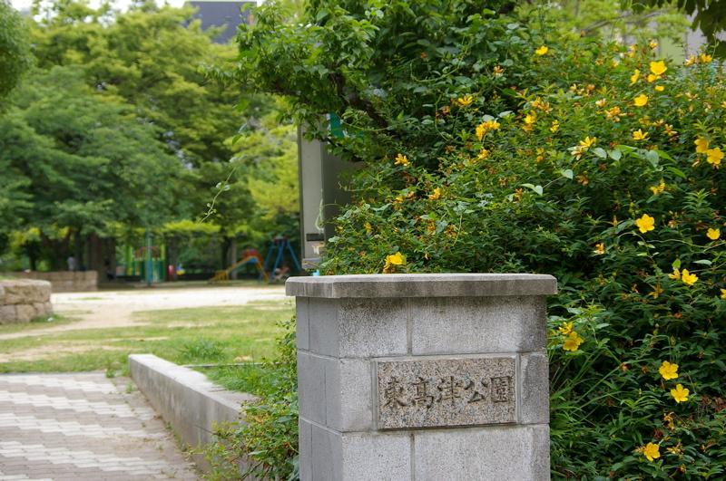 東高津公園の画像
