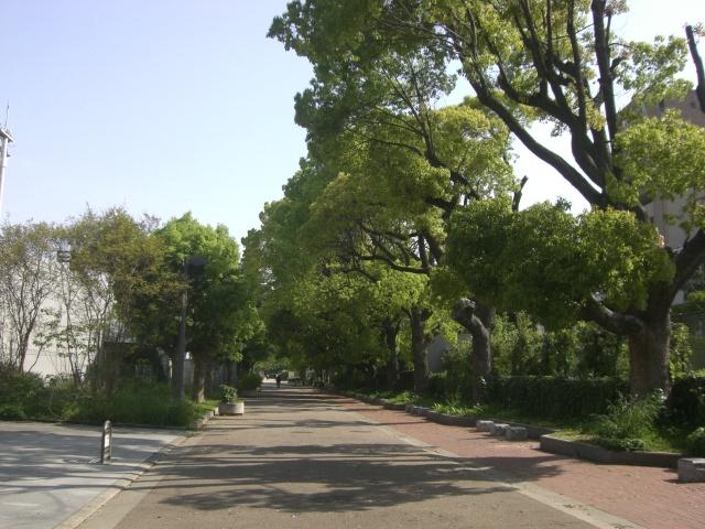 真田山公園の画像