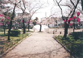 東小橋公園の画像