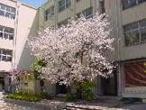 蒲生中学校