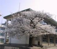 東大阪市立 枚岡東小学校