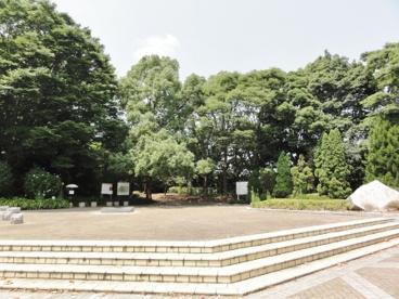 柏の葉公園の画像2