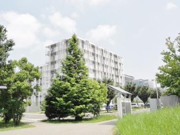 国立大学法人東京大学柏キャンパスの画像2
