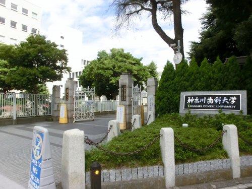 神奈川歯科大学の画像