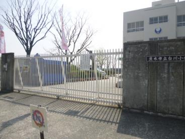 茨木市立白川小学校の画像3