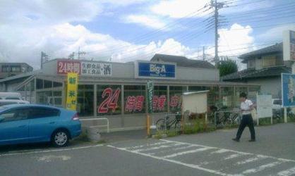 ビッグ・エー 三橋店の画像1