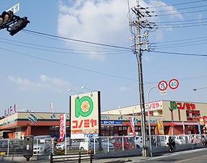 コノミヤ大蓮東の画像2