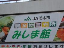 茨木市農協 農産物直売所みしま館