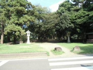大宮公園の画像1