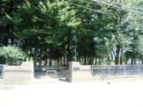 かみこ公園