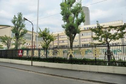 江東区立 数矢小学校の画像2