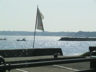 津久井浜海水浴場の画像1