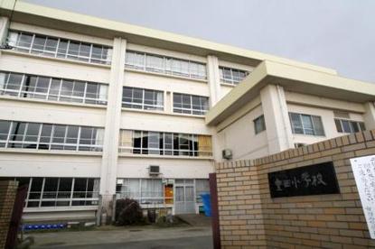 茅ヶ崎市立室田小学校の画像1