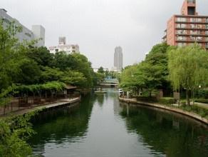横十間川親水公園の画像1