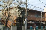大宮愛仕幼稚園の画像2