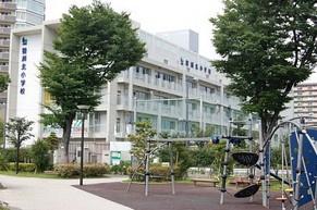 豊洲小学校の画像1