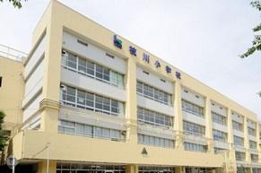 枝川小学校の画像1