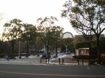 総合文化センターの画像1