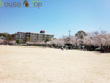 高木公園の画像1