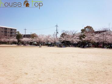高木公園の画像2