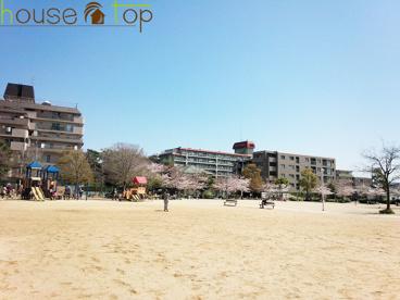 高木公園の画像3