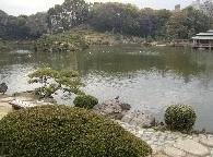 清澄庭園の画像3