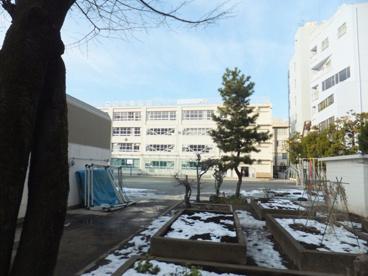 江東区立東陽小学校の画像1