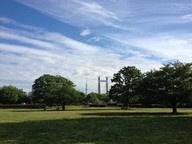 木場公園の画像