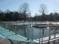 木場公園の画像2